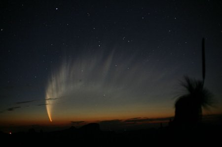 Великолепный хвост кометы McNaught